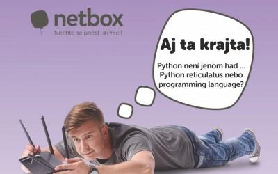 Netbox: Důkaz, že Employer branding není jen pro velké firmy